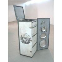 Ellen_vai_no_vapor,2008,Mdf_policromado,ferro,cartao_121x50x48cm